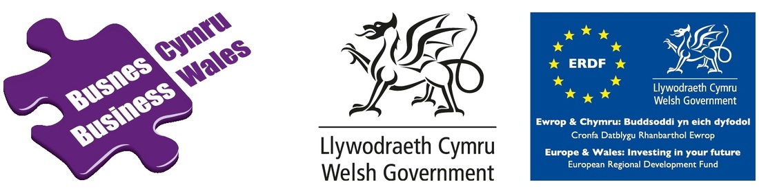 Business Wales Mentoring
